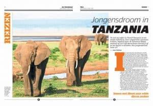 thumbnail of Telegraaf 5 mei 1