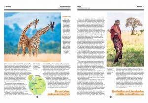 thumbnail of Telegraaf 5 mei 2
