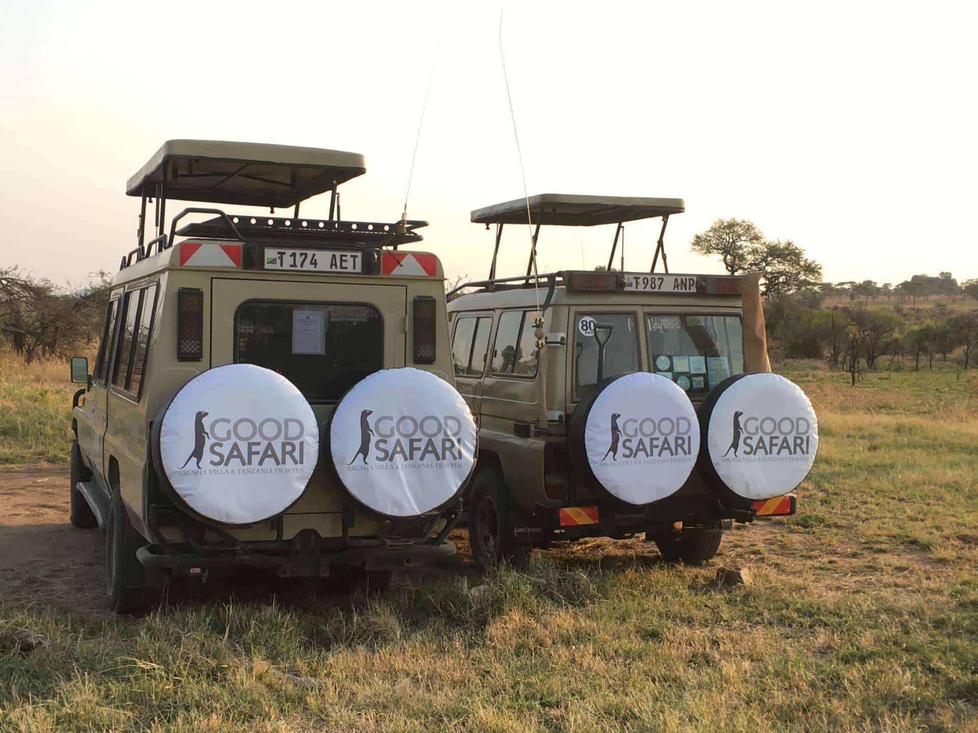 serengeti good safari rondreizen tanzania
