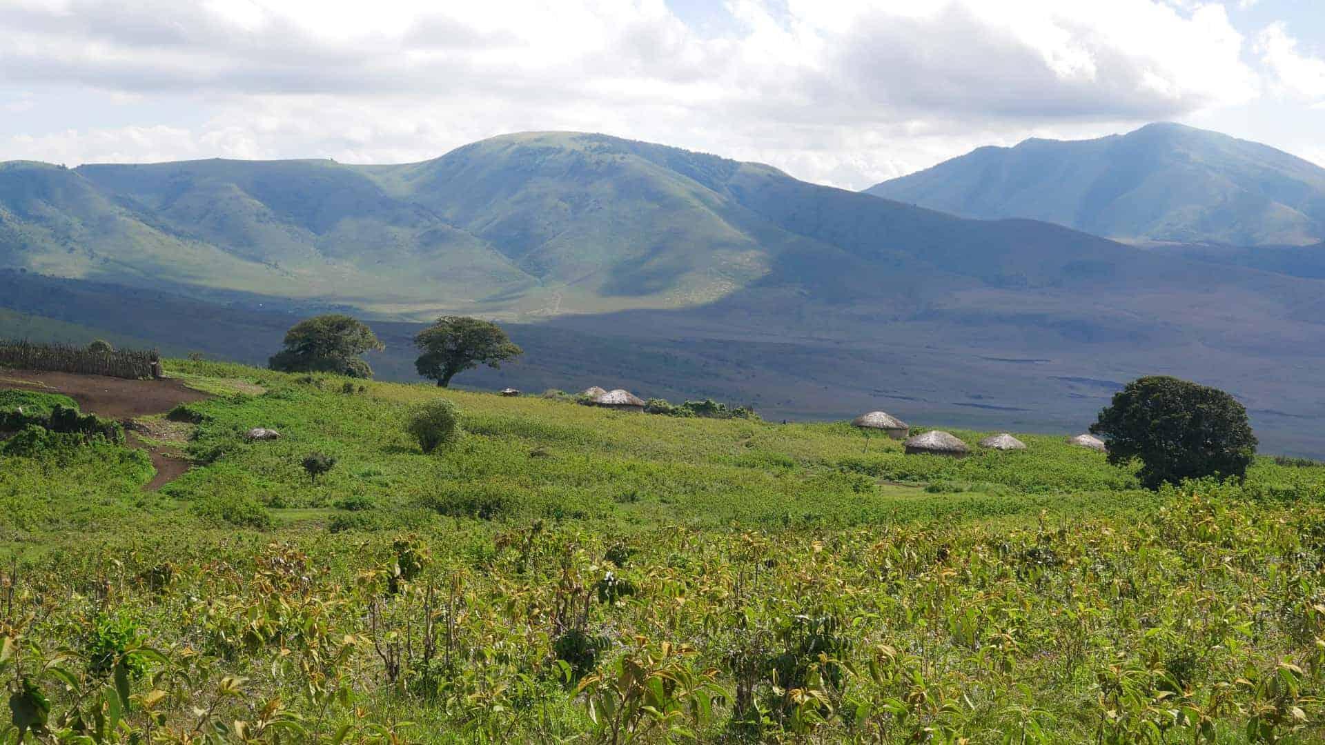 overzicht Maasai Ngorongoro_