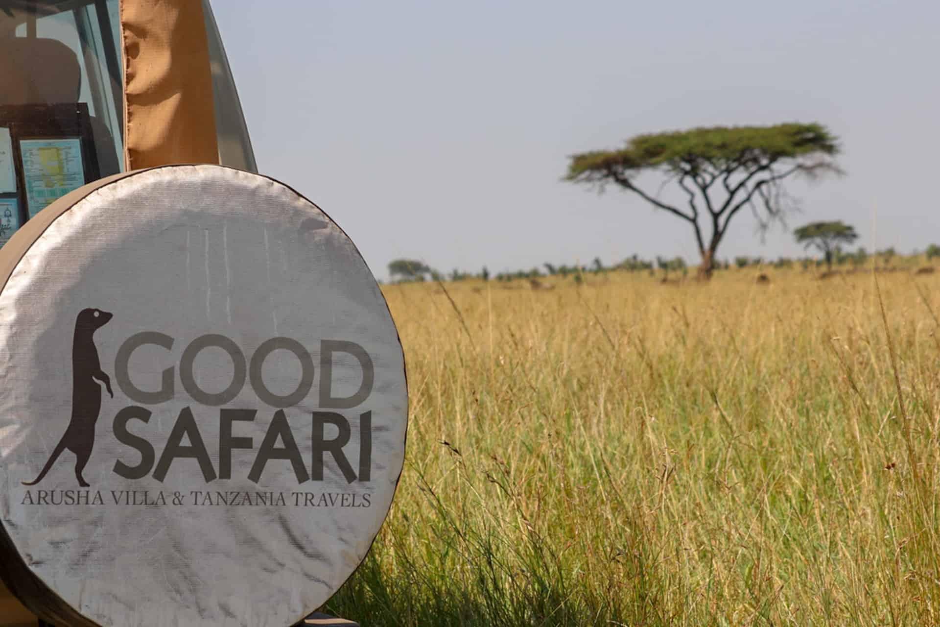 serengeti good safari